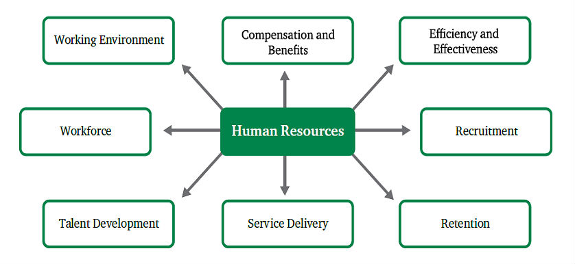 walmart organizational functions human resources Human resources department description and mission  in addition to providing strategic central human resources functions, the human resources department is .