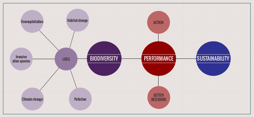 Biodiversity Sustainability Performance