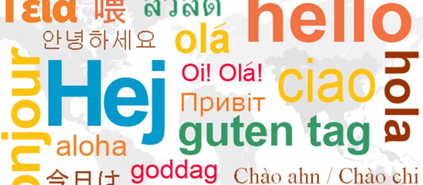 Customer satisfaction in Conference interpreting