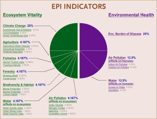 The Performance Indicator Dilemma Essay Sample