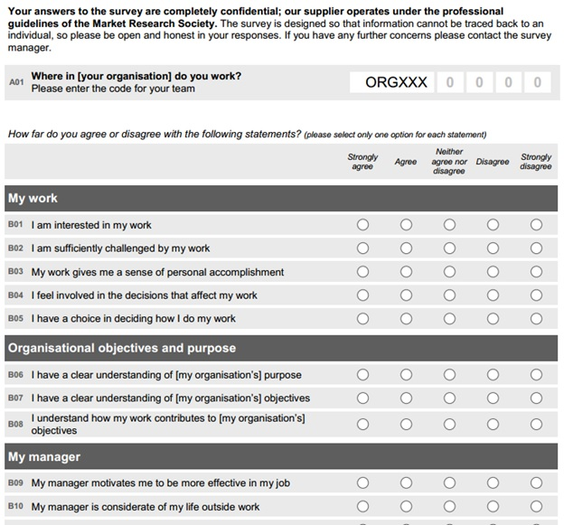 Employee Engagement Survey Template Diversity Employee Satisfaction