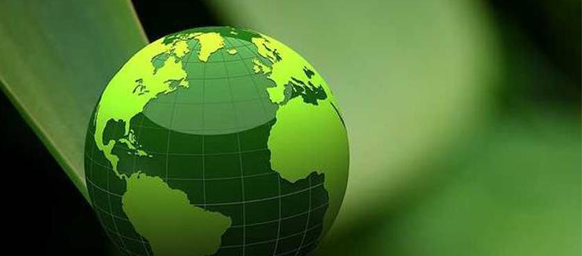Greening companies strategy