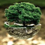 Sustainability Reporting: Should you implement the GRI Standards?