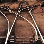 Management biases: handling human blunder