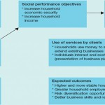 Social and Financial Performance of Microfinance Institutions