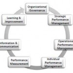 Assessing organizational performance management capability – The Performance Management Maturity Model